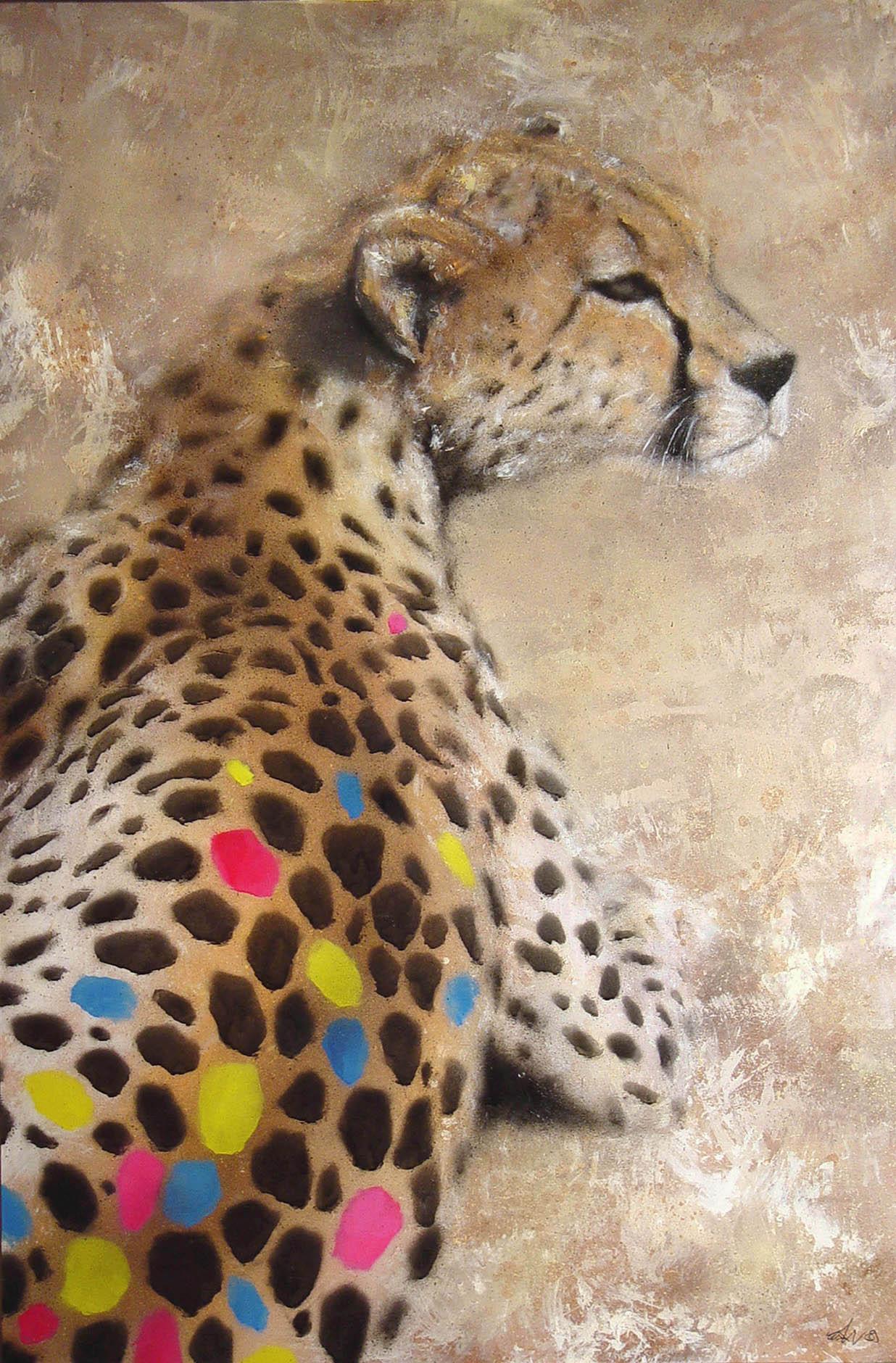 SATH Cheetah
