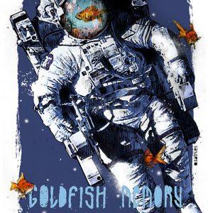 Sath Goldfish Memory