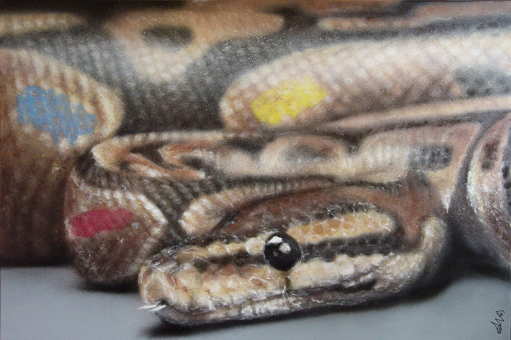 SATH snake